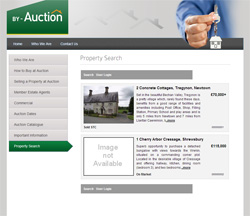 By-Auction